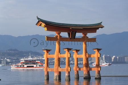厳島の画像 p1_8