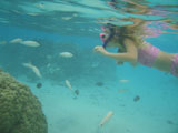 A+young+woman+swimming+underwater+wearing+scuba+gear%2C+Moorea%2C+Tahiti%2C+French+Polynesia%2C+South+Pacific