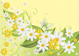 Yellow+and+white+camomiles+on+green+also+it+is+light+a+yellow+background+with+butterflies