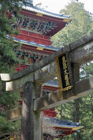 日光 東照宮 石鳥居と五重塔の写真イラスト素材 Gf1380729349