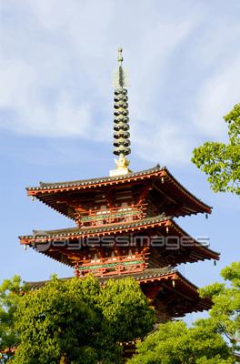 四天王寺の五重塔の写真イラスト素材 Gf1120082709 ペイレスイメージズ