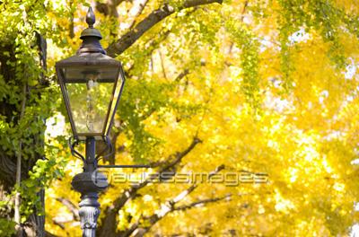 ガス灯の写真イラスト素材 写真素材ストックフォトの定額制ペイレス