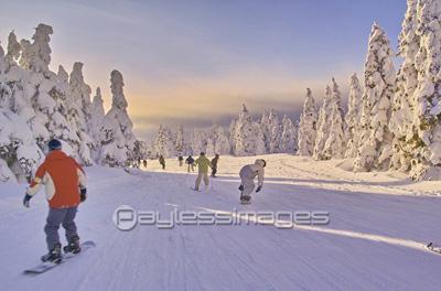 蔵王スキー場の写真イラスト素材 Gf0580122299 ペイレスイメージズ