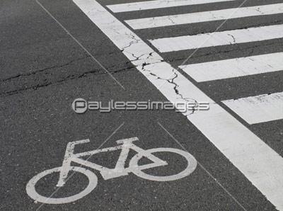 道路の白線のひび割れの写真・イ...