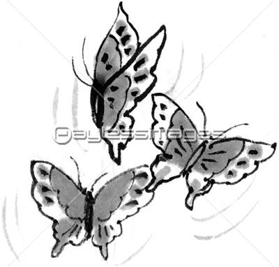 蝶の乱舞の写真イラスト素材 Gf2200304993 ペイレスイメージズ