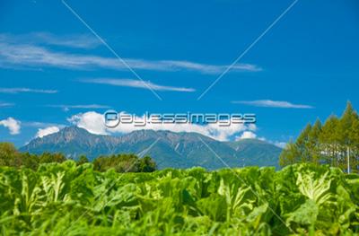 八ヶ岳の写真イラスト素材 写真素材ストックフォトの定額制ペイレス
