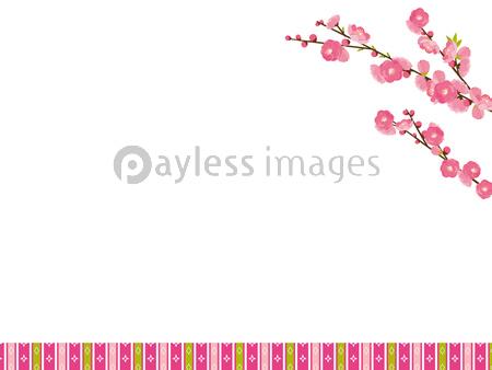 桃の花の写真イラスト素材 Xf5865254596 ペイレスイメージズ