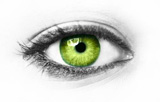 Green+eye+isolated