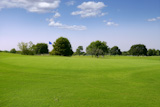 Green+Golf+grass+landscape+in+Texas+leisure+sport+outdoor