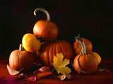 Close-up+of+pumpkins+with+dry+leaves