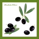 Realistic Olives